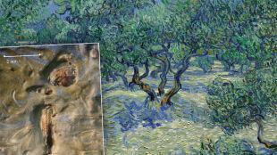 128 lat na płótnie. Nieznany detal dzieła Van Gogha