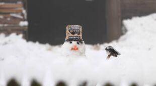 Pierwsze uderzenie zimy na Podlasiu